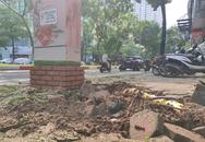 Kinh hoàng cây đổ gây chết người ở Hà Nội nhưng đáng sợ hơn đây không phải lần đầu tiên