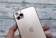 iPhone 11 xách tay Mỹ, Hong Kong, Singapore khác nhau ra sao?