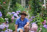 Chìm đắm trong khu vườn đẹp như mê cung nhờ bàn tay khéo léo của người đàn ông yêu thích làm vườn