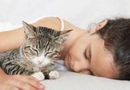 Phòng ngừa nhiễm giun sán từ chó mèo?