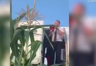 Máy bay Nga hạ cánh xuống đồng ngô sau khi cả đàn chim bị hút vào động cơ