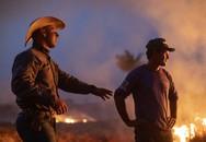 Thông tin bất ngờ: Brazil từ chối tiền viện trợ chữa cháy rừng Amazon của G7