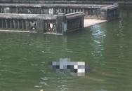 Hà Nội: Phát hiện thi thể người phụ nữ nổi trên ao rối thuộc Đền Phù Đổng