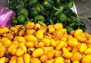Số lượng rau quả Trung Quốc tràn về chợ đầu mối tăng đột biến