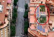 Đưa tin giải đua xe, máy quay làm lộ vườn cần sa trên sân thượng
