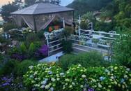 Người phụ nữ 40 tuổi nghỉ hưu sớm, dùng tiền dành dụm cả đời để đổi lấy khu vườn rực rỡ như thiên đường trên đồi hướng biển