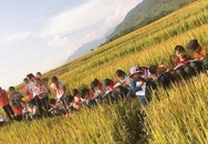 Tiết học ngập sắc vàng khiến trẻ em phố thị khát khao
