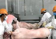 Lùng mua, vét cạn trong dân, thịt lợn tăng giá chưa từng có