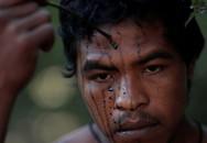 Lâm tặc Amazon phục kích, giết hại thổ dân bảo vệ rừng