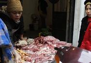 Giá thịt lợn cao, người dân rủ nhau mua gom lợn quê