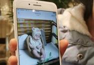 Được mẹ đưa đi massage để cải thiện sức khỏe, bé trai 4 tháng tuổi vừa vào thang máy rời đi liền hôn mê và tử vong ngay sau đó