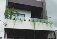 Nhà phố không cần lắp điều hòa vẫn thoáng mát, dễ chịu nhờ thiết kế giếng trời hợp lý ở Đà Nẵng