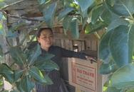 Người phụ nữ giấu hàng nghìn bao thuốc lá lậu trong chuồng gà