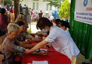 Tết sớm ở Tuy Phước