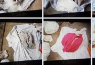 Chi tiết gây sốc vụ phát hiện 9 bộ xương người trong vườn nhà