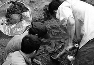 Phát hiện nhiều mẫu xương nghi là xương người khi nạo vét ao tôm