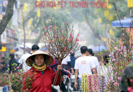 Ghé thăm chợ hoa cổ Hàng Lược mỗi năm chỉ họp duy nhất một lần ở Thủ đô