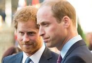 Rạn nứt William - Harry 'bắt nguồn từ khi bố mẹ ly hôn'