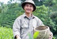 Chàng kỹ sư công nghệ khai sinh một thương hiệu trà sạch sản xuất thủ công