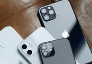 iPhone 12 chính hãng loạn giá, chênh lệch nhau gần 4 triệu đồng