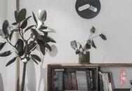 Gia đình trẻ cải tạo căn ký túc xá cũ rộng 80m² thành không gian sống nhiều ánh sáng