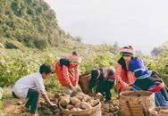 """CEO Công ty Long Hải – Nguyễn Văn Thành: Bốn """"nhà"""" bắt tay, người tiêu dùng mới có sản phẩm sạch"""