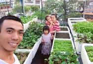 Vườn rau sân thượng 'ăn không xuể' của nhiếp ảnh gia