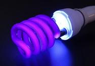 Sai lầm dễ mắc khi dùng đèn phát tia cực tím phòng dịch tại nhà
