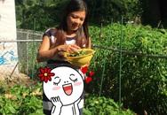 """Phạm Thanh Thảo làm vườn bên Mỹ, trái nào trái nấy đều """"ngoại cỡ"""""""