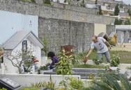 Thanh minh năm nay nên làm thế nào khi không tảo mộ để cách ly xã hội?