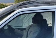 Chính trị gia được chôn cất trong xe Mercedes