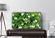 Loạt TV 4K 55 inch giá 10 triệu đồng