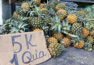 """""""Điểm danh"""" trái cây siêu rẻ bán ngập vỉa hè nhưng không rõ xuất xứ, chất lượng"""