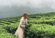 Lai Châu: Chính sách tín dụng góp phần thực hiện hiệu quả công tác giải quyết việc làm