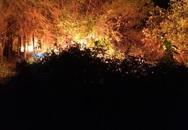 Hàng trăm người nỗ lực khống chế cháy rừng ở Hà Tĩnh