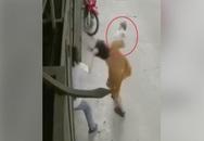 Người vợ trải lòng về clip bị chồng giật tóc, hành hung khi đang bế con khiến cháu bé đập đầu xuống đất