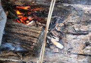 Nghệ An: Vợ ném tàn thuốc cạnh can xăng gây cháy khiến 2 vợ chồng thương vong