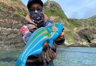 Con cá có màu sắc như trong thế giới huyền thoại