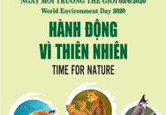 Hành động vì thiên nhiên' hưởng ứng Ngày Môi trường thế giới