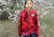 Vụ bé trai 13 tuổi sát hại bé gái 10 tuổi vì xâm hại bất thành: Không xét xử hình sự, phán quyết cuối cùng khiến gia đình uất ức