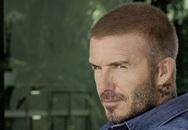 Cựu danh thủ David Beckham muốn làm phim riêng về cuộc đời mình