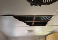 Thấy trần nhà rung như động đất, người đàn ông tá hoả chứng kiến cảnh tượng này