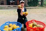 Thú vui làm vườn, trồng bưởi khi rảnh rỗi của nghệ sĩ Chiều Xuân