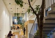 Ngôi nhà ống đẹp dịu dàng lấy cảm hứng từ những ngôi nhà truyền thống cũ của Hà Nội
