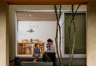 Ngôi nhà bình yên đến nao lòng với khoảng sân vườn thiết kế nghệ thuật đẹp như tranh vẽ