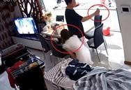 """Tự tin gọi facetime còn quay camera khắp phòng để chứng minh """"trong sáng"""", anh chồng """"chết đứng"""" vì cô vợ quá """"cao tay"""""""