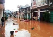 Quảng Ninh: Trích 30 tỷ đồng hỗ trợ thiệt hại do Cơn bão số 14