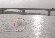 Dùng photoshop bịa ra quái vật sông Hồng