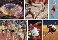 Những người khổng lồ thống trị Olympic