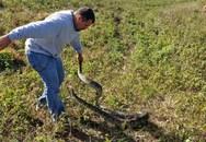 Lạ lùng người đàn ông thích bắt trăn, rắn bằng tay không